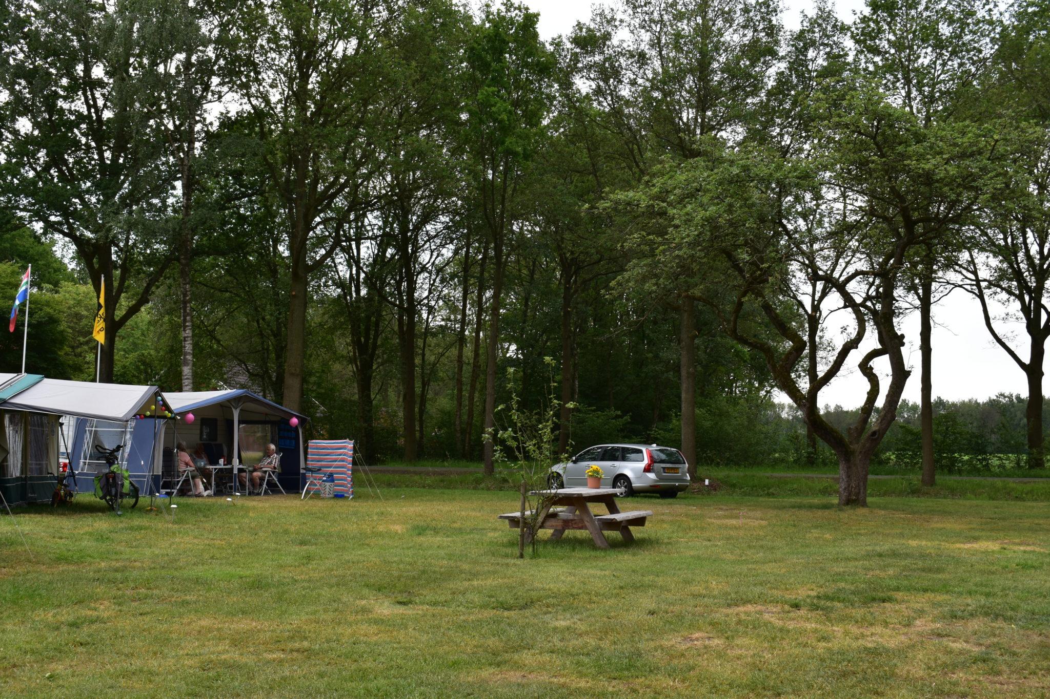 campingharminahoeve boomgaard